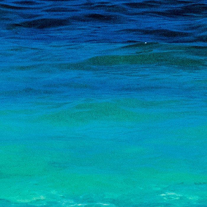 SEA BEAUTY Leggings