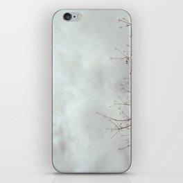 gloomy fluffs iPhone Skin