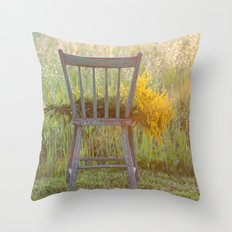 Remnants of a Summer Day Throw Pillow