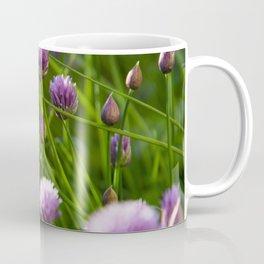 beautiful chive flowers in evening light Coffee Mug