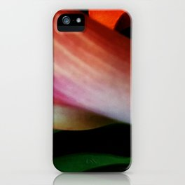 Faded Kayla Lily iPhone Case