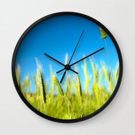Fields of gold Wall Clock