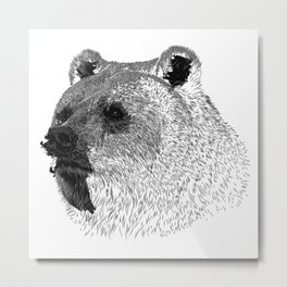 Grizzly bear Black and white Metal Print