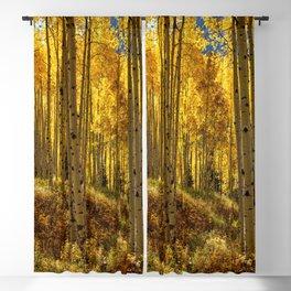 Autumn Aspen Forest Aspen Colorado Blackout Curtain