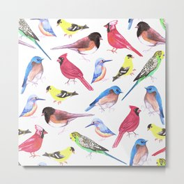 Colorful birds in tetrad color scheme Metal Print