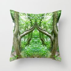 Wizard's Arch Throw Pillow