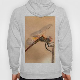 Painted Dragonfly Isolated Against Ecru Hoody