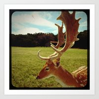 antlers Art Prints featuring Antlers by Anna Dykema Photography