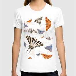Colorful butterflies of europe T-shirt