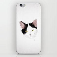 Fibrine iPhone & iPod Skin
