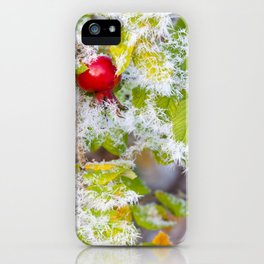 Rose hip and frozen leaves iPhone Case