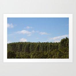 Hamakua Ranch. Art Print