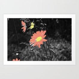 Pretty as a Petal Art Print