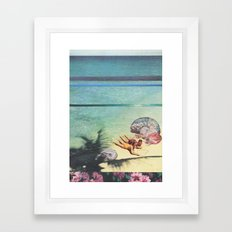 Sea Collections Framed Art Print