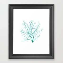 Green Coral Seafan Framed Art Print
