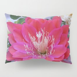 Roses Are White, Cactus is Rose... Pillow Sham