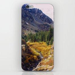 Autumn in Colorado iPhone Skin