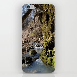 Alone in Secret Hollow with the Caves, Cascades, and Critters, No. 7 of 20 iPhone Skin