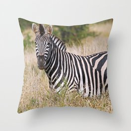 Zebra in the grass - Africa wildlife Throw Pillow