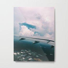 Flight Metal Print