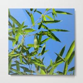 green bamboo II Metal Print