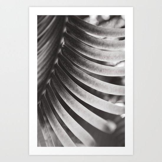 Secret Garden ~ No.5 Art Print