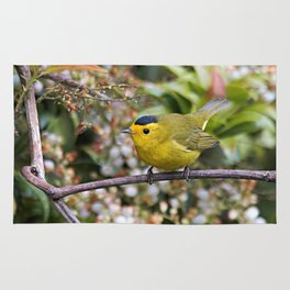 Cute Wilson's Warbler on the Grapevine Rug