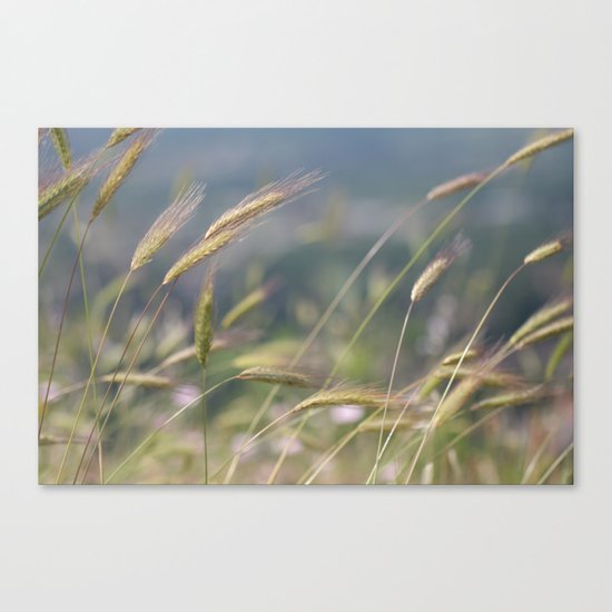 im Wind Canvas Print
