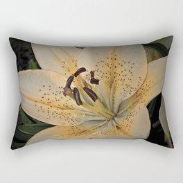 Morning Passion Rectangular Pillow