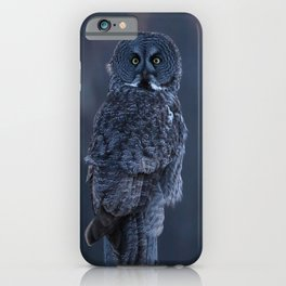 Great Gray Owl at dusk iPhone Case