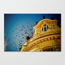 Birds on a Building, Sibiu, Romania Canvas Print