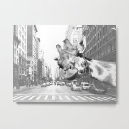 Black and White Selfie Giraffe in NYC Metal Print