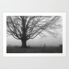 Foggy Morning 2 Art Print