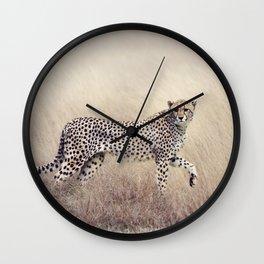 Cheetah on the savannah Wall Clock