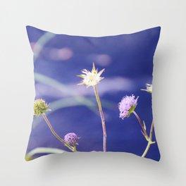 Field Scabious Knautia Arvensis Throw Pillow