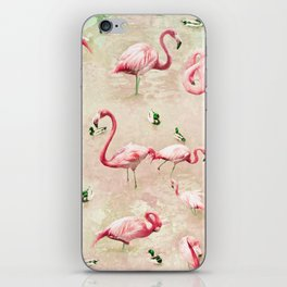 Flamingos Vintage Pink  iPhone Skin