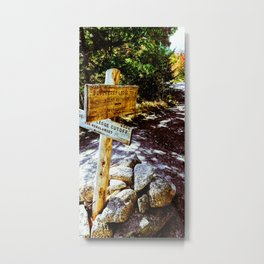 Blueberry Sign Metal Print