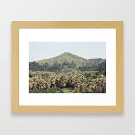 Exotic Mountain Framed Art Print