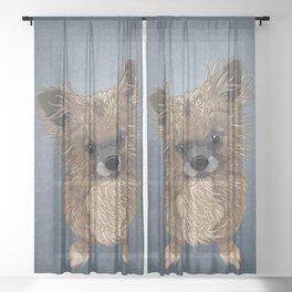 Boo - blue Sheer Curtain