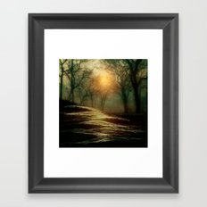 From small beginnings and big endings. by Viviana González Framed Art Print