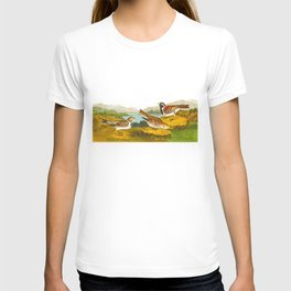 Lapland Long-spur Bird T-shirt