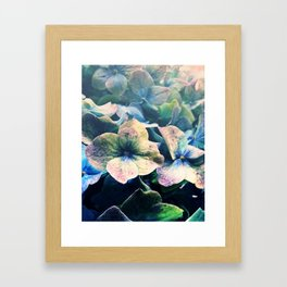 Blue Hydrangea Flower Botanical Framed Art Print