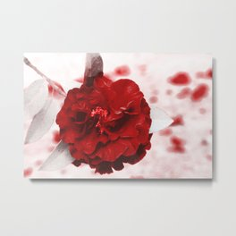 Rosa Sangue Metal Print