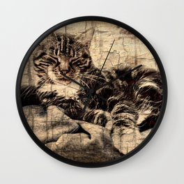 most phanastic tomcat ever Wall Clock