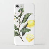lemon iPhone & iPod Cases featuring Lemon by Anna Yudina