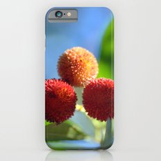 Strawberry tree fruits 8697b iPhone 6s Slim Case