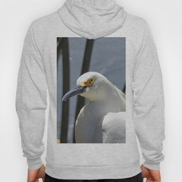 At A Glance Hoody