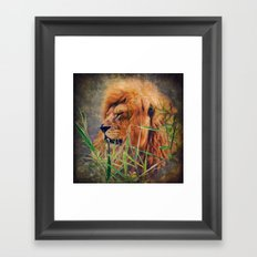 A  Lion portrait Framed Art Print