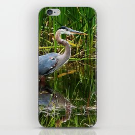Great Blue Heron Hunting Along the River iPhone Skin
