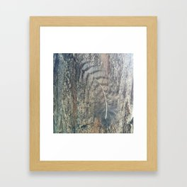 Bark Feather Framed Art Print